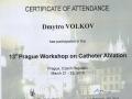 13 Prague wokshop